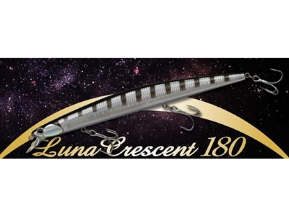 Immagine di Luna Crescent 180 mm Slow Sinking