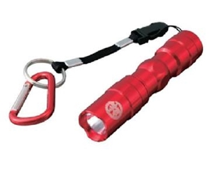 Immagine per la categoria Torce UV
