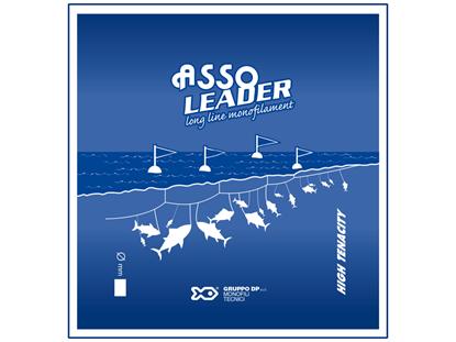 Immagine di Asso Leader