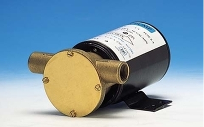 Immagine di Elettropompa Rotativa Autoadescante Maxi Deck
