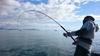 Immagine di Abu Garcia Oceanfield Offshore Casting