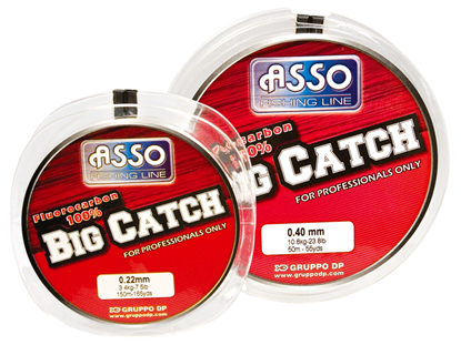 Immagine di Asso Big Catch Fluorocarbon 100%