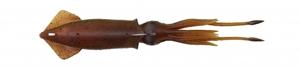Immagine di Lunghezza 25 cm  - Peso 126 gr - Colore Red Brown (Conf. 1 Pz)