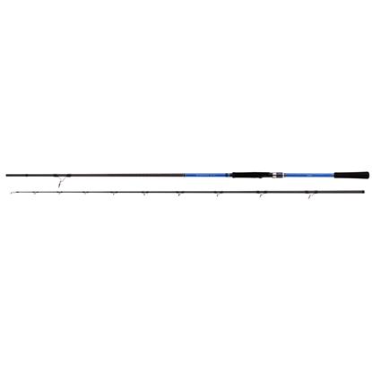 Immagine di Shimano Blue Romance AX Shore Jigging 2,90 mt 50-80 gr