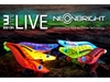 Immagine di Yamashita Egi OH Live Neon Bright 3.0